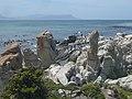 Betty's Bay, 7141, South Africa - panoramio (2).jpg
