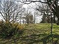 Beyond the fence - geograph.org.uk - 1812583.jpg