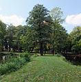 Białystok, park, po 1856, Dojlidy Fabryczne 26 - 011.jpg