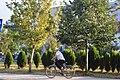 Bicikleta dhe natyra.jpg
