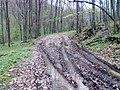 Biciklom,Velika - Jankovac - panoramio (3).jpg