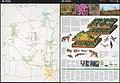 Big Thicket National Preserve, Texas LOC 2014590122.jpg