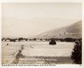 Bild från familjen von Hallwyls resa genom Mindre Asien och Turkiet 27 April - 20 Juni 1901. Bursa - Hallwylska museet - 103212.tif