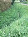 Blüßengraben schwenkt nordwärts.jpg