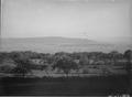Blick von Le Roc gegen Jolimont - Vully - CH-BAR - 3241792.tif