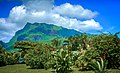 Bora-Bora French Polynesia - panoramio (7).jpg