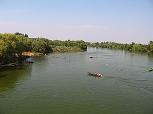 Morović - Swimmers on the Bosut River, Morovic