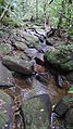 Boulders in a stream, Atlantic forest, northern littoral of Bahia, Brazil (15347795421).jpg