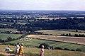 Box Hill viewpoint - geograph.org.uk - 1063509.jpg