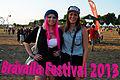 Bråvalla Festival 2013.jpg
