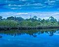 Braden River 2 (31818811923).jpg