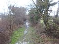 Bridleway from Elm Farm - geograph.org.uk - 1725263.jpg