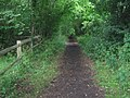 Bridleway in Home Wood - geograph.org.uk - 1349907.jpg