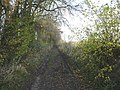 Bridleway leading from Badlesmere to Badlesmere Court Farm - geograph.org.uk - 1051263.jpg