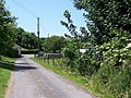 Bridleway near Winterborne St Martin - geograph.org.uk - 1359539.jpg