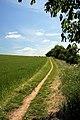 Bridleway to Dalham - geograph.org.uk - 1355441.jpg