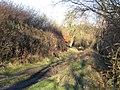 Bridleway to Graianrhyd ^2 - geograph.org.uk - 349738.jpg