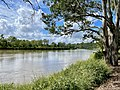 Brisbane River at Seventeen Mile Rocks, Queensland, 2021, 02.jpg
