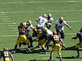 Buffaloes on offense at Colorado at Cal 2010-09-11 51.JPG