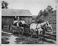Buggy & Horses (16906406607).jpg