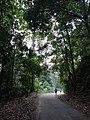 Bukit Pelindung in the heart of Kuantan.jpg