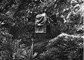 Bundesarchiv Bild 135-S-02-13-34, Tibetexpedition, Karawane, Lasttier.jpg