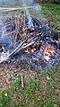 Burning Hillsborough NC 163002 (23683968258).jpg