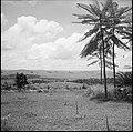 CH-NB - Belgisch-Kongo, Thysville (Mbanza Ngungu)- Landschaft - Annemarie Schwarzenbach - SLA-Schwarzenbach-A-5-26-012.jpg