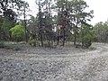 Cabaña Entre el Huachichil y Sierra Hermosa, Coahuila los llanos - panoramio.jpg