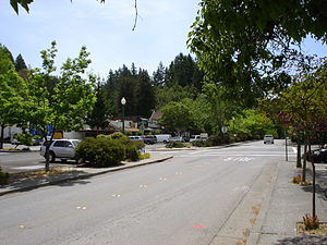Occidental, California - Downtown Occidental, 2008