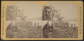 Camp scene in the Adirondacks, from Robert N. Dennis collection of stereoscopic views.png