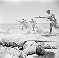 Campaign in North Africa 1940 - 1943 E12922.jpg