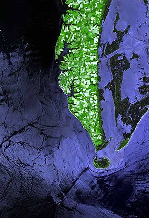 Cape Charles (headland) - Satellite image of Cape Charles