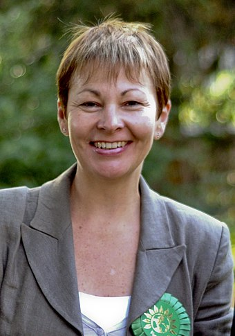 Brighton Pavilion MP Caroline Lucas is the only Green MP in the UK Parliament. Caroline Lucas 2010.jpg