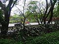 Casa na beira do Rio Pinheiros.jpg