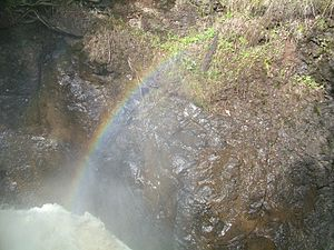 Cascade River State Park - Image: Cascade Park MN arf (4)