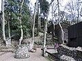 Castelo dos mouros (40558808802).jpg