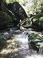 Cave Creek resurgence.jpg