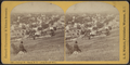 Cayuga Street, Ithaca, N.Y. (from South Hill), from Robert N. Dennis collection of stereoscopic views 2.png