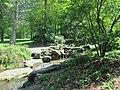 Central Park May 2019 19.jpg