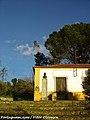 Ceras - Portugal (6876924825).jpg