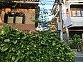 Chang Moi, Mueang Chiang Mai District, Chiang Mai, Thailand - panoramio (57).jpg