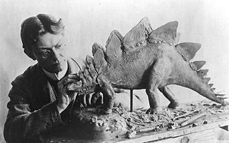 Charles R. Knight - Knight working on Stegosaurus in 1899.