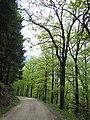 Chemin du Chauffour - panoramio.jpg