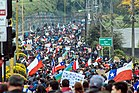 Chilean Protests 2019 Puerto Montt 12.jpg