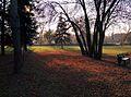 Chisinau Dendrarium - fall, sunset.jpg