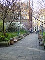 Churchyard, St Paul's Church, Covent Garden - geograph.org.uk - 590212.jpg