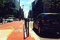 Ciclovia e Avenida.JPG