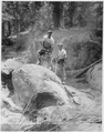 Civilian Conservation Corps in California, Camp Wolverton, Sequoia National Park - NARA - 197076.tif