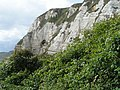 Cliffs on south west coast path, east of Branscombe - geograph.org.uk - 952262.jpg